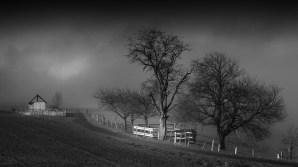 Bliesgau im Nebel