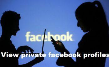 view-private-facebook-profiles