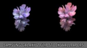 samsung galaxy z flip wallpapers featured image