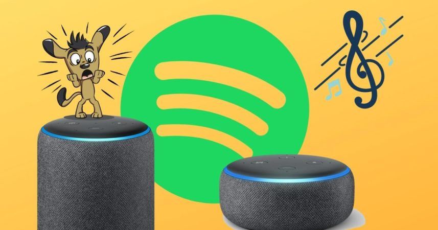 Top 13 Ways to Fix Amazon Echo Not Playing Music From Spotify
