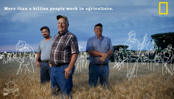 More than a billion people work in agriculture.