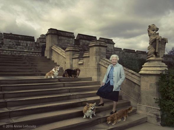 Annie Leibovitz photo of the Queen at an event in Windsor with her beloved Welsh corgi dogs