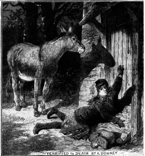 Illustrated Police News: Terrified by a donkey.