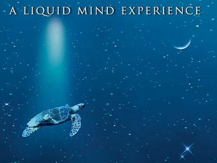 liquid-mind-2