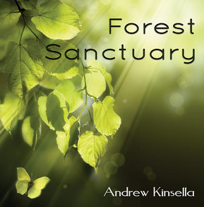 forest-sanctuary