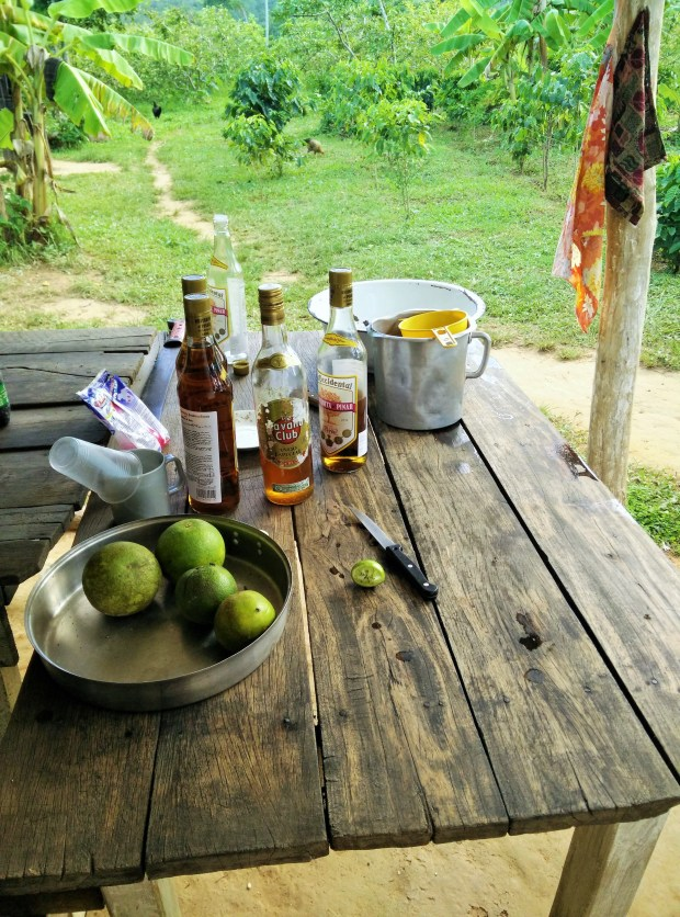 The bar table at a farm!