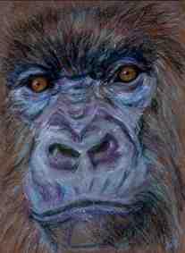 moonlit gorilla