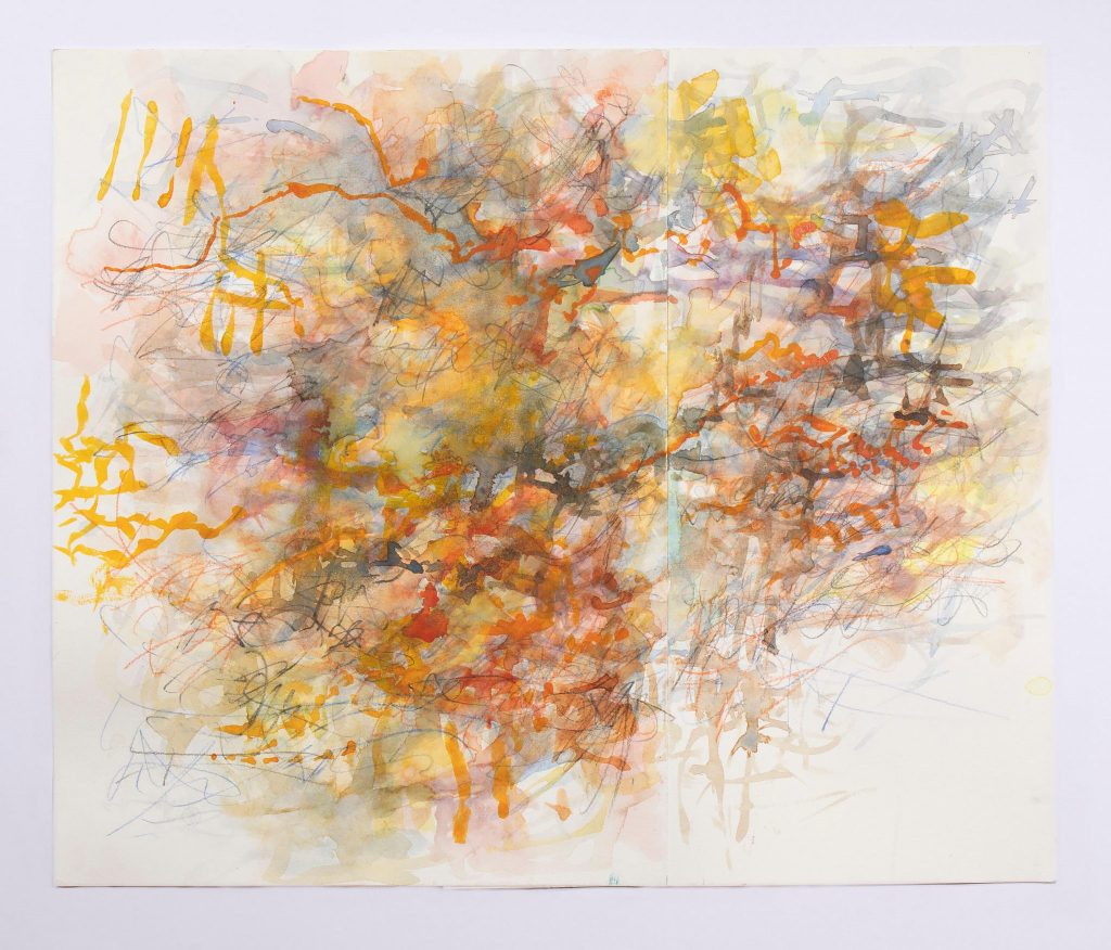 Tracy Hayes' Replicate and Sublimate Graphite and watercolor on paper