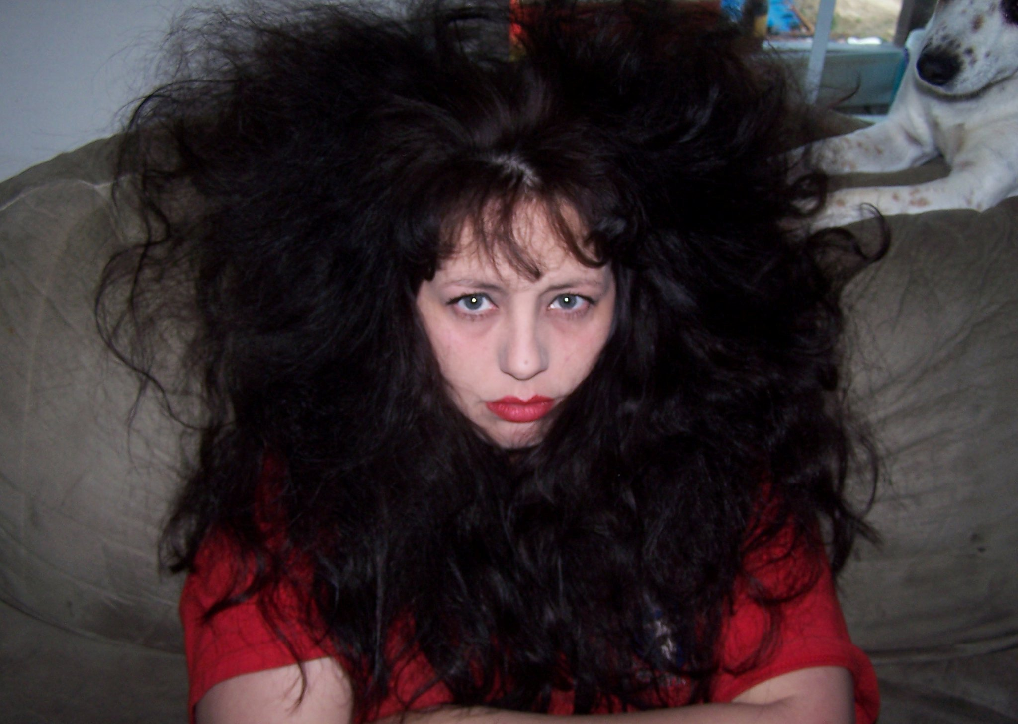 Crazy Hair With Attitude The New Authors Fellowship