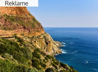 Gode rejsetips – Turen går til Afrika