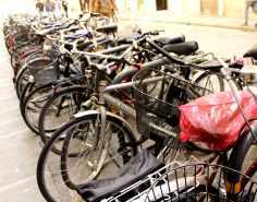 Bikes... bikes... bikes...