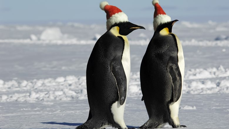Canada Santas Moving To South Pole Because Of Global
