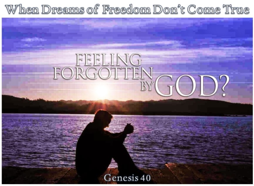 When Dreams of Freedom Don't Come True