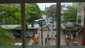 Harvard Square Stay-cation