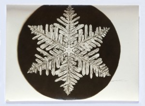 bentley_wilson_snowflake04