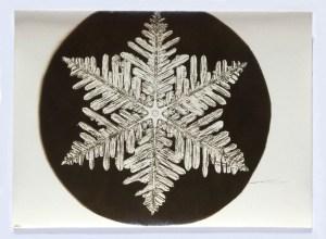 bentley_wilson_snowflake04