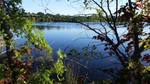 Fresh Pond, cambridge