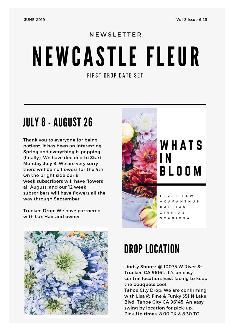 Newcastle Fleur Newsletter