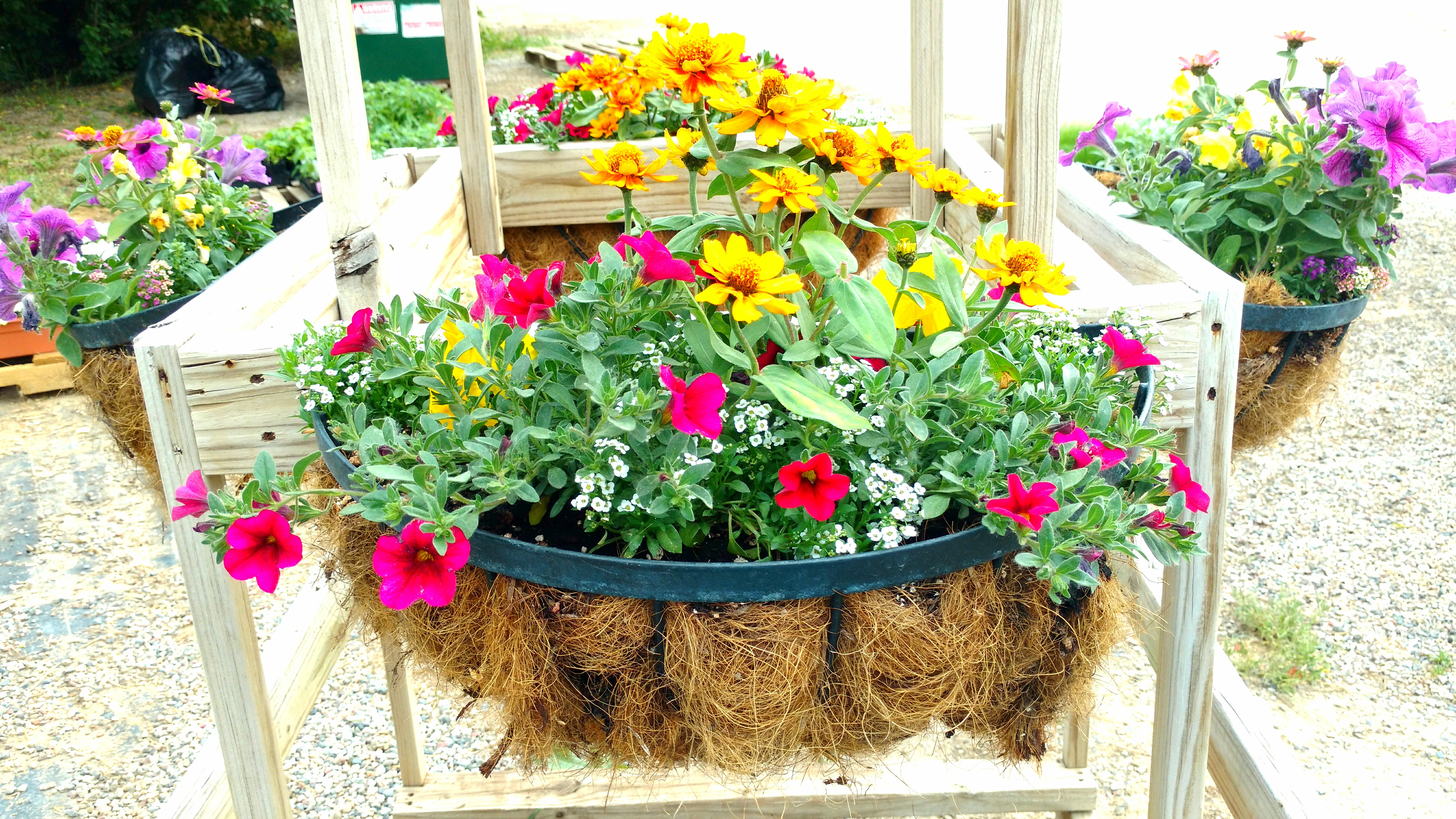 Custom Planters make great gifts!