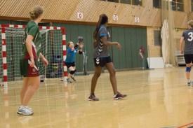 Handball_07--02-2014-35