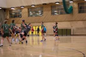 Handball_07--02-2014-42