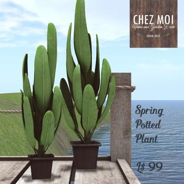 RFL Potted Plantc CHEZ MOI