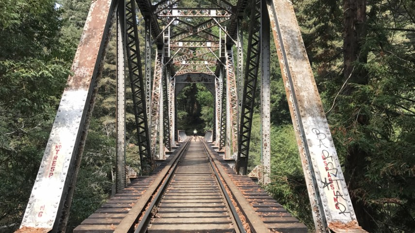 Henry Cowell Redwoods State Park - Experience Old Growth Redwoods - New  City Adventures