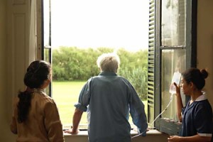 ventana-window