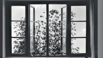 """Still, Living: A Review Of Kiarostami's Final Film """"24 Frames"""""""