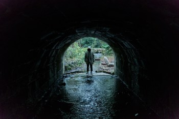 "Still Spooked: A Review Of ""Ghost Stories"""