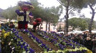 battle_of_the_violets6