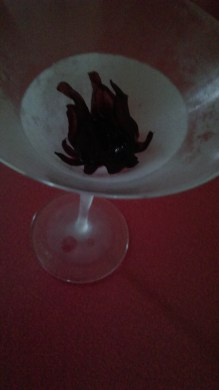 hibiscus_flower_chilled