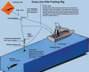 Kite Fishing | West Marine