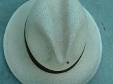 The Ant on the Hat