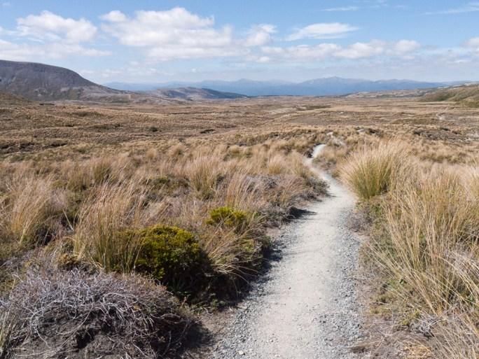 The track towards Waihohonu