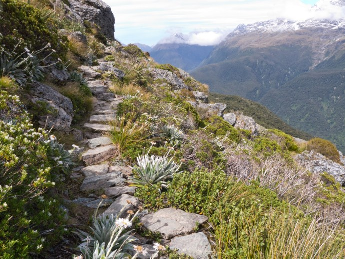 The Routeburn Track - Fiordland