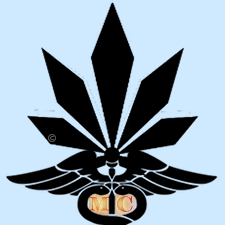 Missouri Medical Marijuana MedCard Doctors