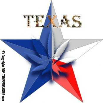 Click for a link to find out about the legal marijuana pot cannabis movement in Texas