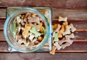 Types of Dog Food - Which One should You Choose?
