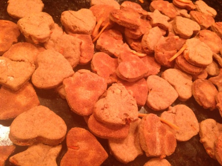 Homemade Carrot Chips Dog Treats