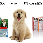 FRONTLINE PLUS VS K9 ADVANTIX: WHAT IS THE BEST FLEA MEDICINE?
