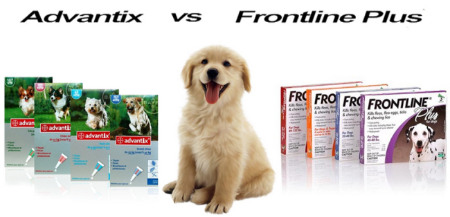 Advantix vs. Frontline Plus