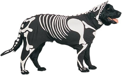 dog-skeleton-costume