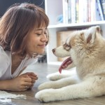 Tips for Bonding with your New Dog