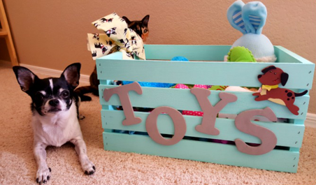 8 dog toy box ideas that you will love new dog owners dog toy box diy solutioingenieria Gallery