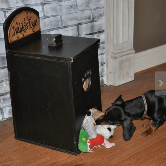 8 dog toy box ideas that you will love new dog owners personalized dog toy box by glen burnie solutioingenieria Gallery