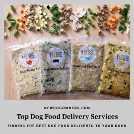 top dog food delivery services logo