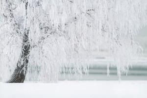 Fresh Snow Cleansing Reiki