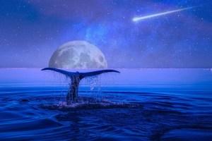 Blue Star Lemurian Healing Empowerment