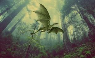 DragonWinds Healing Attunement